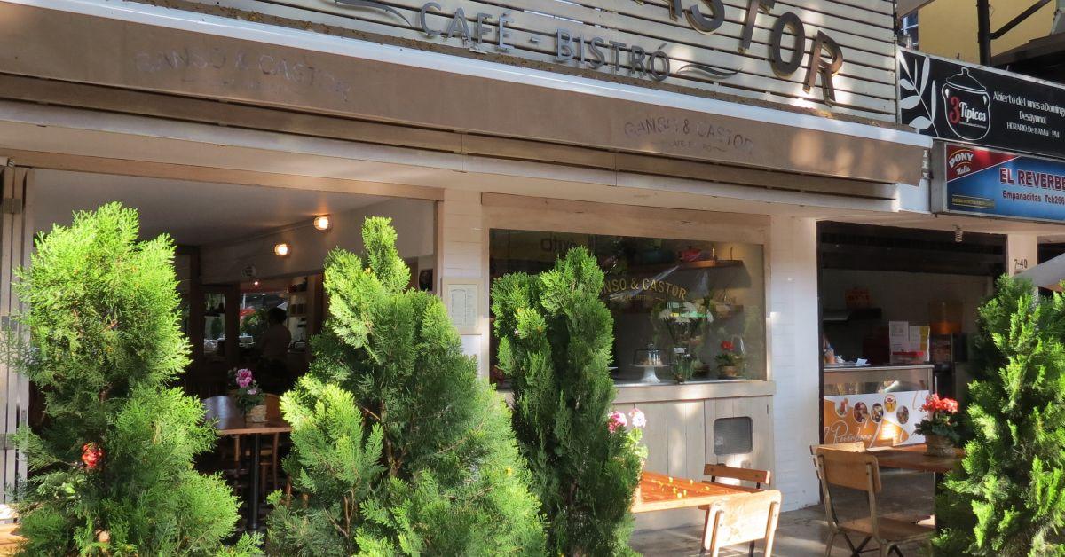 Ganso y castor medell n restaurante cafeter a francesa for Castor services