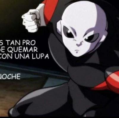Gabo P.